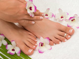 Manicure & Pedicure Lymington Hamphire
